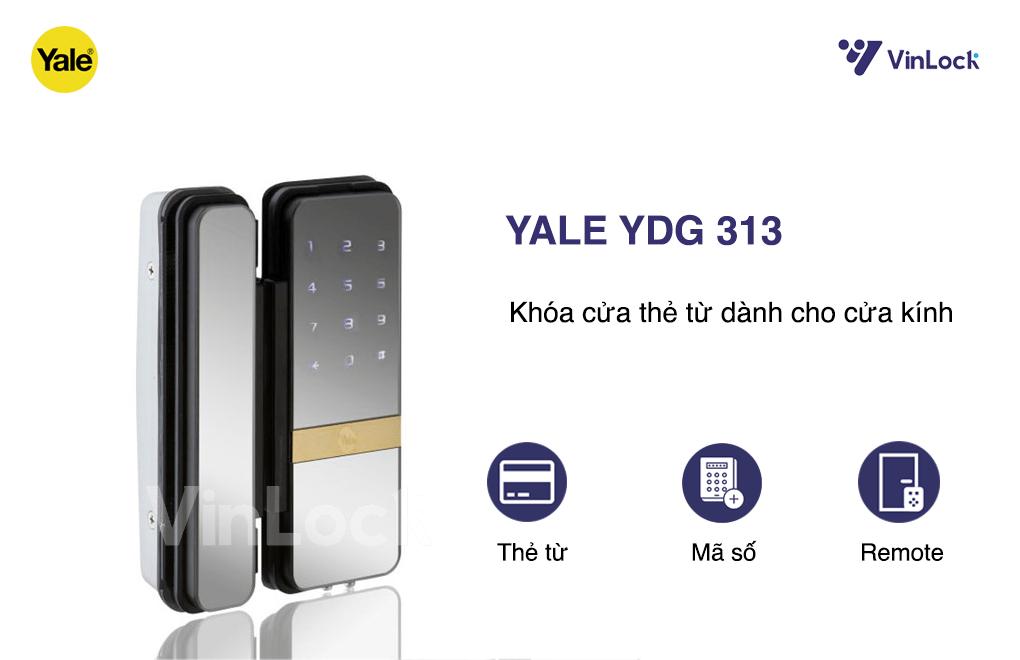 yale-313